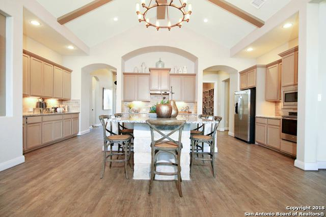 3206 Harvest Hill Blvd, Marion, TX 78124 (MLS #1316995) :: Exquisite Properties, LLC