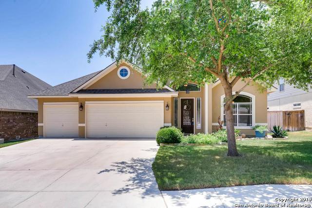 25003 White Creek, San Antonio, TX 78255 (MLS #1317047) :: The Castillo Group