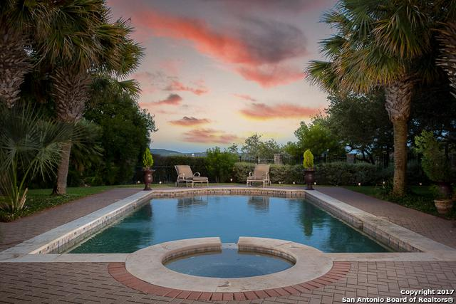 6 Davenport Lane, San Antonio, TX 78257 (MLS #1317145) :: Alexis Weigand Real Estate Group