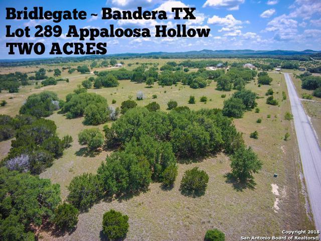 LOT 289 Appaloosa Hollow, Bandera, TX 78003 (MLS #1317452) :: Exquisite Properties, LLC