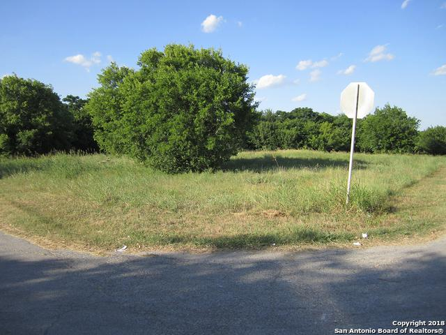 00 W Horseshoe Bend, San Antonio, TX 78228 (MLS #1317466) :: Alexis Weigand Real Estate Group