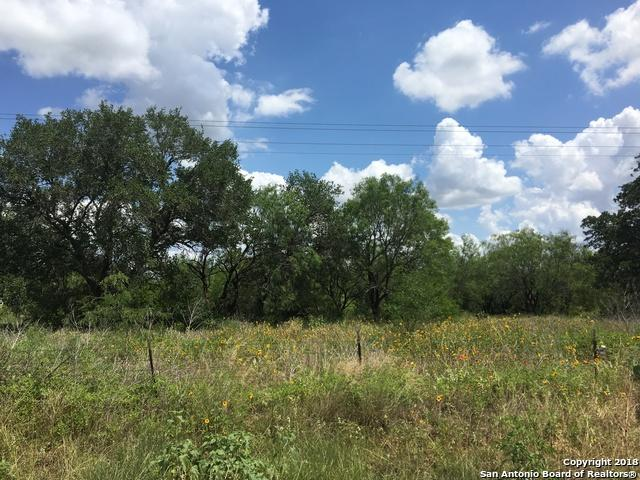 TBD Coble Rd, Poteet, TX 78065 (MLS #1317918) :: Alexis Weigand Real Estate Group