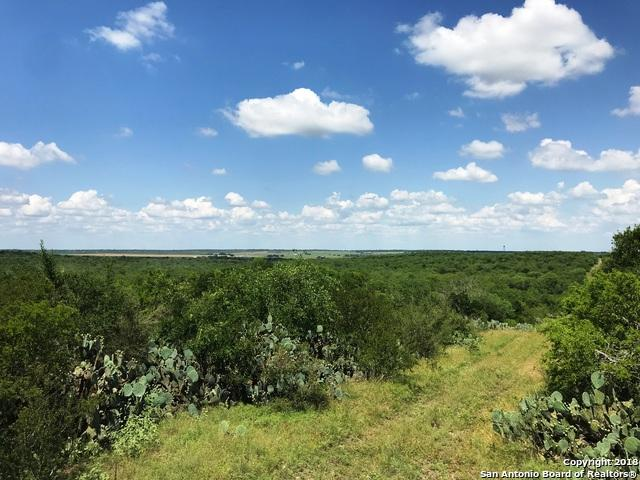 TRACT 1 County Road 4514, Castroville, TX 78009 (MLS #1318020) :: Magnolia Realty