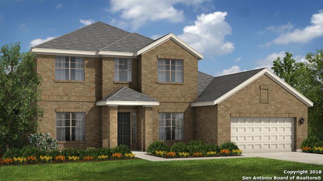 24132 Acanthus, San Antonio, TX 78260 (MLS #1318176) :: Exquisite Properties, LLC