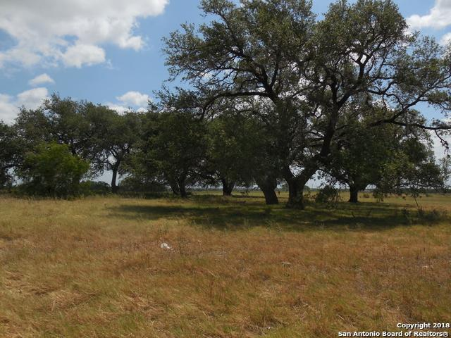TBD Fm 476 W, Poteet, TX 78065 (MLS #1318220) :: Tom White Group