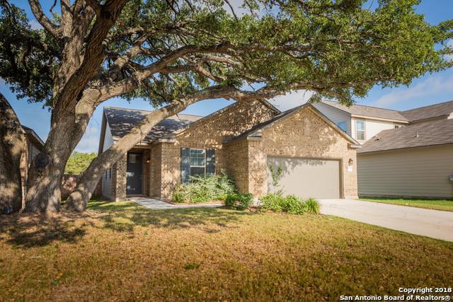 7915 Bearcat Field, San Antonio, TX 78253 (MLS #1318238) :: Alexis Weigand Real Estate Group