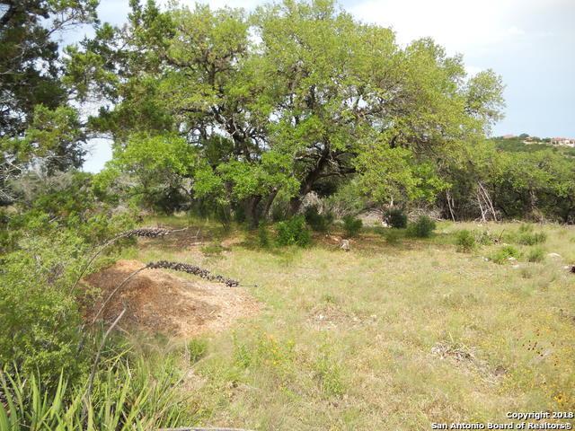 LOT B Tanglewood Trl, Spring Branch, TX 78070 (MLS #1318275) :: Exquisite Properties, LLC