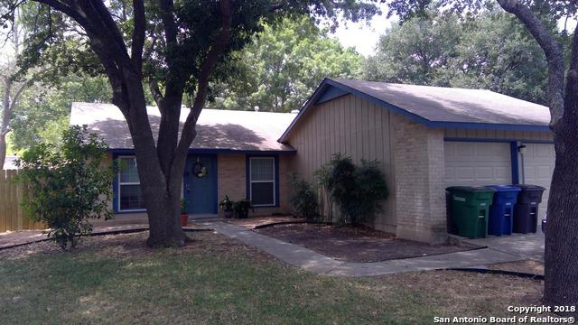 16323 Puma Pass St, San Antonio, TX 78247 (MLS #1318279) :: Exquisite Properties, LLC