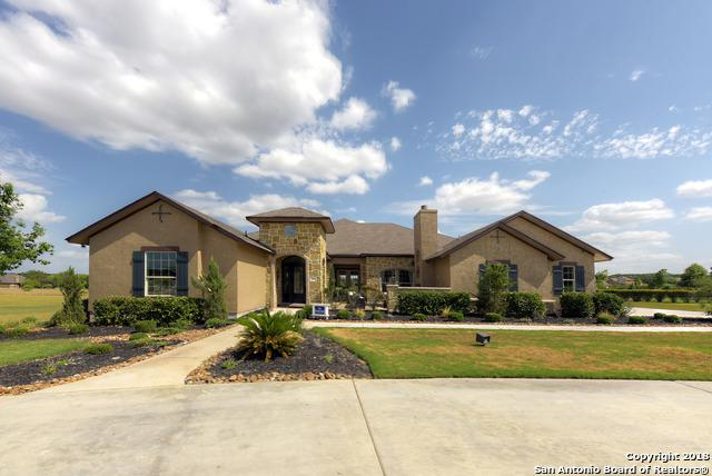 26226 Park Bend Dr, New Braunfels, TX 78132 (MLS #1318418) :: The Castillo Group