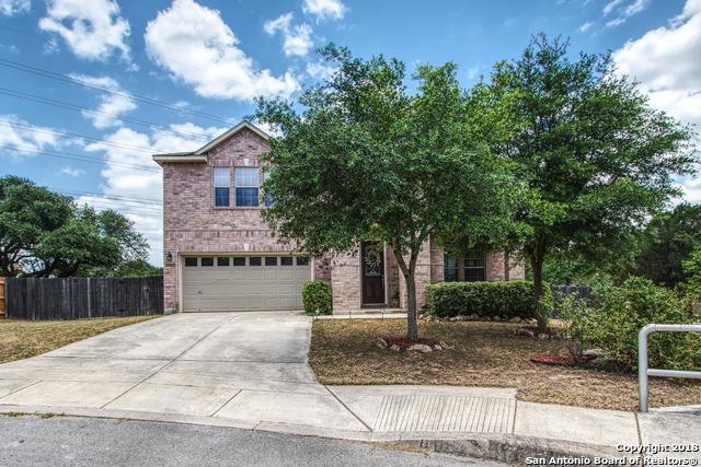 21138 Creek River, San Antonio, TX 78259 (MLS #1318597) :: Exquisite Properties, LLC