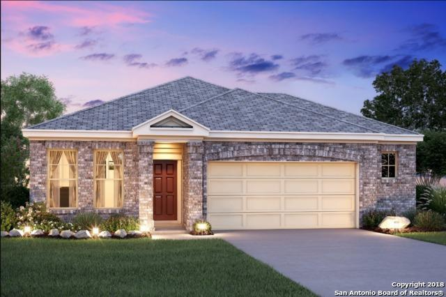 15007 Costa Leon, San Antonio, TX 78245 (MLS #1318662) :: The Castillo Group