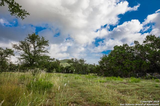 570 County Road 131, Tarpley, TX 78003 (MLS #1318874) :: Tom White Group