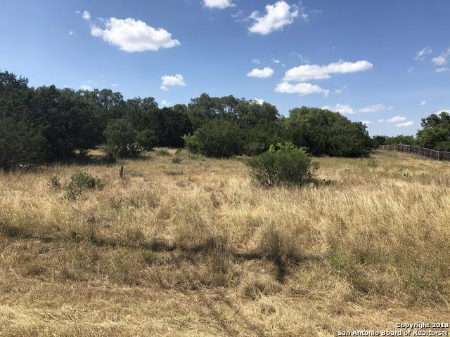 1120 Pinnacle Pkwy, New Braunfels, TX 78132 (MLS #1319228) :: Exquisite Properties, LLC