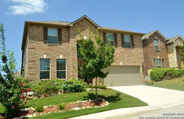 3619 Texas Sotol, San Antonio, TX 78261 (MLS #1319434) :: ForSaleSanAntonioHomes.com