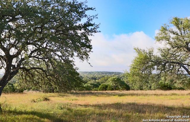 288 John Price, Blanco, TX 78606 (MLS #1319499) :: Exquisite Properties, LLC