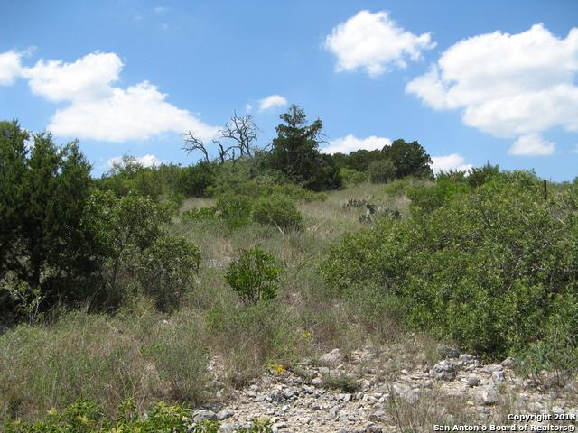 LOT 1 Cr2481, Hondo, TX 78861 (#1319595) :: The Perry Henderson Group at Berkshire Hathaway Texas Realty