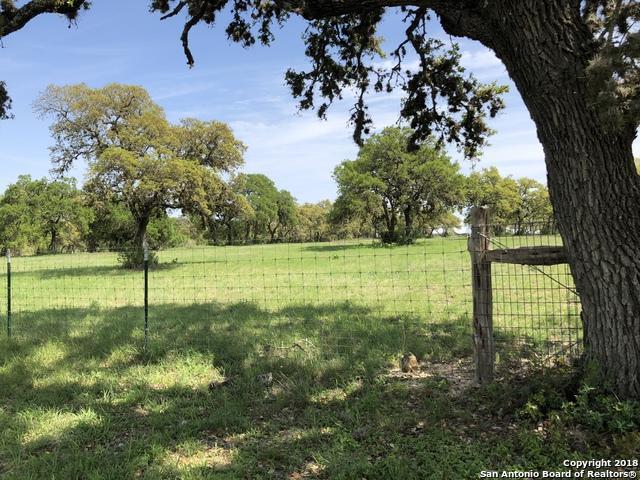 27 Ammann Rd, Boerne, TX 78015 (MLS #1319692) :: The Castillo Group