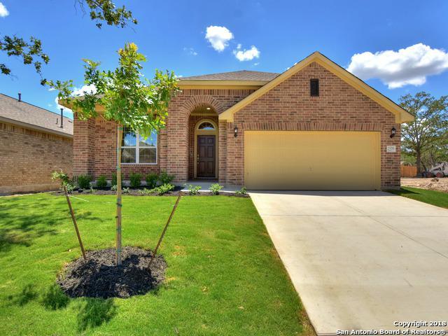 25761 Two Springs, San Antonio, TX 78209 (MLS #1319786) :: The Castillo Group