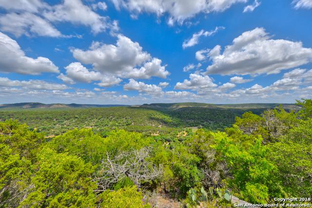 1950 Estrellita Ranch Rd, Canyon Lake, TX 78133 (MLS #1319823) :: Exquisite Properties, LLC