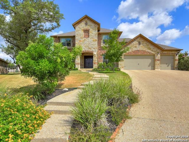 24007 Mary Pt, San Antonio, TX 78260 (MLS #1319912) :: Alexis Weigand Real Estate Group