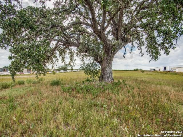 365 State Highway 97 E, Floresville, TX 78114 (MLS #1319971) :: Erin Caraway Group