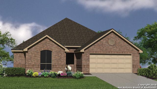 117 Waterford, Cibolo, TX 78108 (MLS #1320021) :: Exquisite Properties, LLC