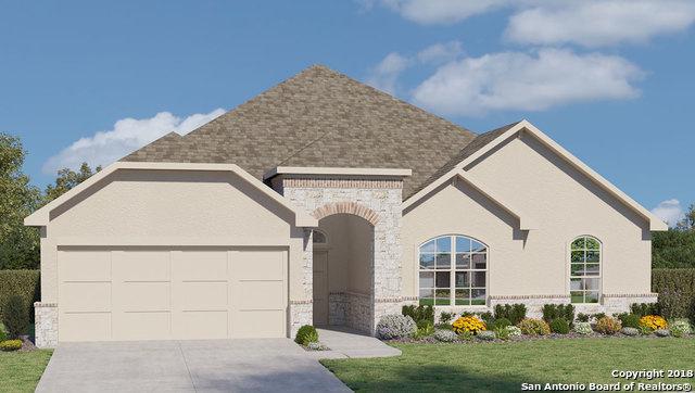 227 Bamberger, New Braunfels, TX 78132 (MLS #1320079) :: Exquisite Properties, LLC