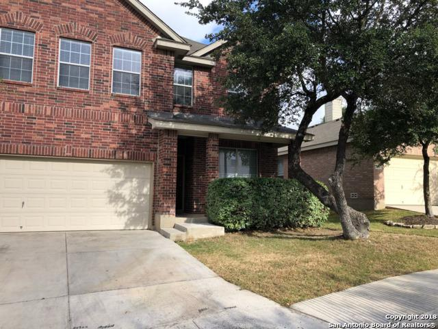 26803 Redstone Hill, San Antonio, TX 78261 (MLS #1320153) :: ForSaleSanAntonioHomes.com