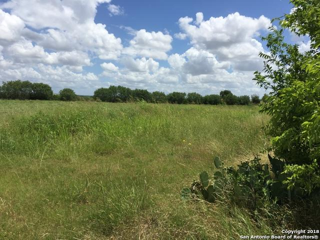 10945 Dillon Rd, Atascosa, TX 78002 (MLS #1320192) :: Berkshire Hathaway HomeServices Don Johnson, REALTORS®