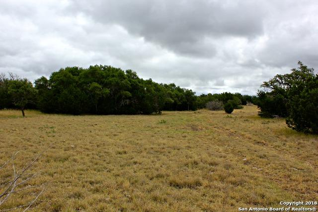 00 Antler Drive, Fort McKavett, TX 76841 (MLS #1320269) :: Alexis Weigand Real Estate Group