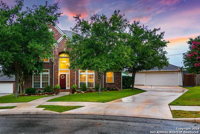 24403 Bear Mtn, San Antonio, TX 78258 (MLS #1320330) :: Exquisite Properties, LLC