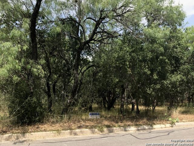 75 Turnberry Way, San Antonio, TX 78230 (MLS #1320447) :: Exquisite Properties, LLC