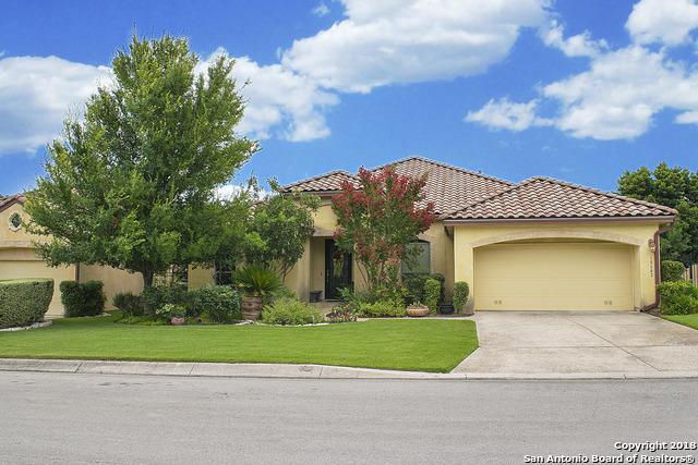 18642 Castellani, San Antonio, TX 78258 (MLS #1320497) :: Alexis Weigand Real Estate Group