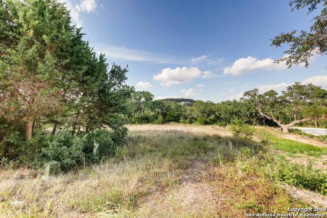 25030 Caliza Cove, Boerne, TX 78006 (MLS #1320965) :: Exquisite Properties, LLC