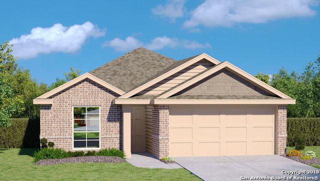 918 Pumpkin Rdg, New Braunfels, TX 78130 (MLS #1321194) :: Exquisite Properties, LLC