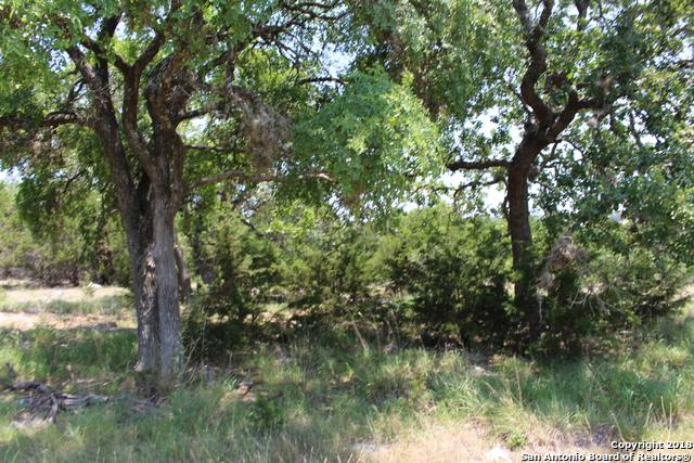 229 High Point Circle, Spring Branch, TX 78070 (MLS #1321195) :: Exquisite Properties, LLC