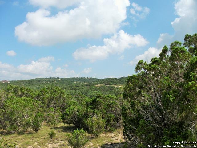 1213 Hidden Cove, Spring Branch, TX 78070 (MLS #1321505) :: Alexis Weigand Real Estate Group