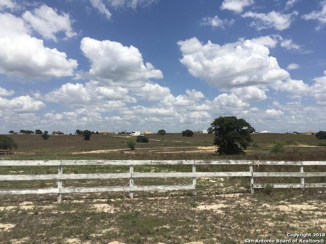 115 Lake View Circle, La Vernia, TX 78121 (MLS #1321529) :: Exquisite Properties, LLC