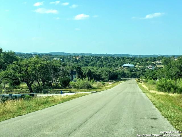 141 Gadwall Way, Spring Branch, TX 78070 (MLS #1321651) :: Exquisite Properties, LLC