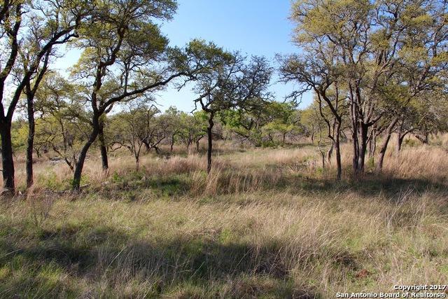 LOT 87 Billings Forest Rd, Boerne, TX 78006 (MLS #1321694) :: Exquisite Properties, LLC