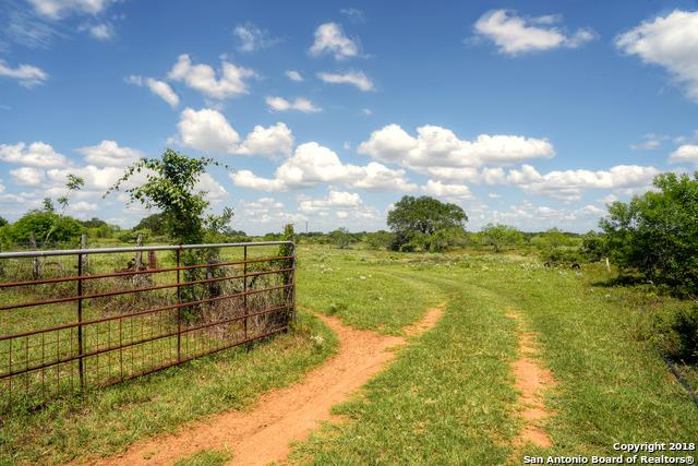 2498 County Road 117, Nixon, TX 78140 (MLS #1321737) :: Alexis Weigand Real Estate Group