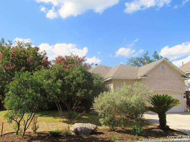 531 Mesa Ridge, San Antonio, TX 78258 (MLS #1322037) :: NewHomePrograms.com LLC