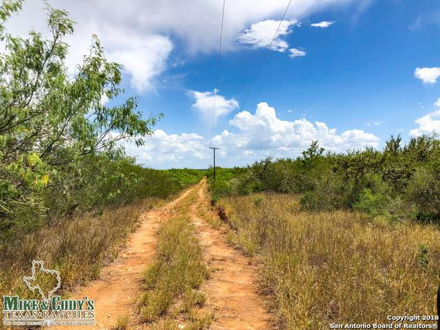 000 County Road 272, Not Applicab, TX 78376 (MLS #1322222) :: The Castillo Group