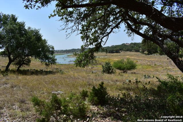 2272 San Jose Way, Canyon Lake, TX 78133 (MLS #1322974) :: Alexis Weigand Real Estate Group