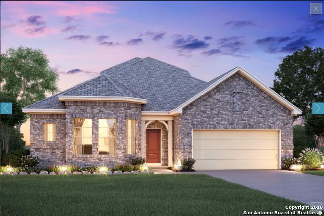 209 Asiago, Cibolo, TX 78108 (MLS #1323362) :: Alexis Weigand Real Estate Group