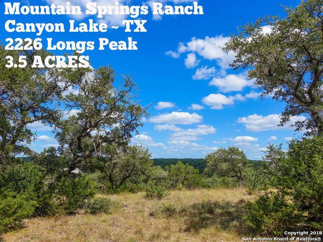 2226 Longs Peak, Canyon Lake, TX 78133 (MLS #1323639) :: Exquisite Properties, LLC