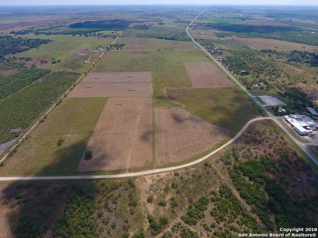 2193 State Highway 97 W, Floresville, TX 78114 (MLS #1324072) :: Neal & Neal Team