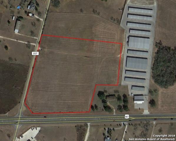 17580 W Us Highway 87, Adkins, TX 78101 (MLS #1324194) :: Tom White Group