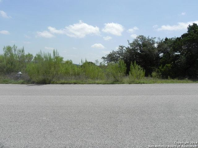 19318 Terra Mont, San Antonio, TX 78255 (MLS #1324560) :: Tami Price Properties Group