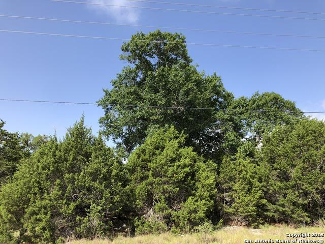 228 High Point Circle, Spring Branch, TX 78070 (MLS #1324720) :: Exquisite Properties, LLC